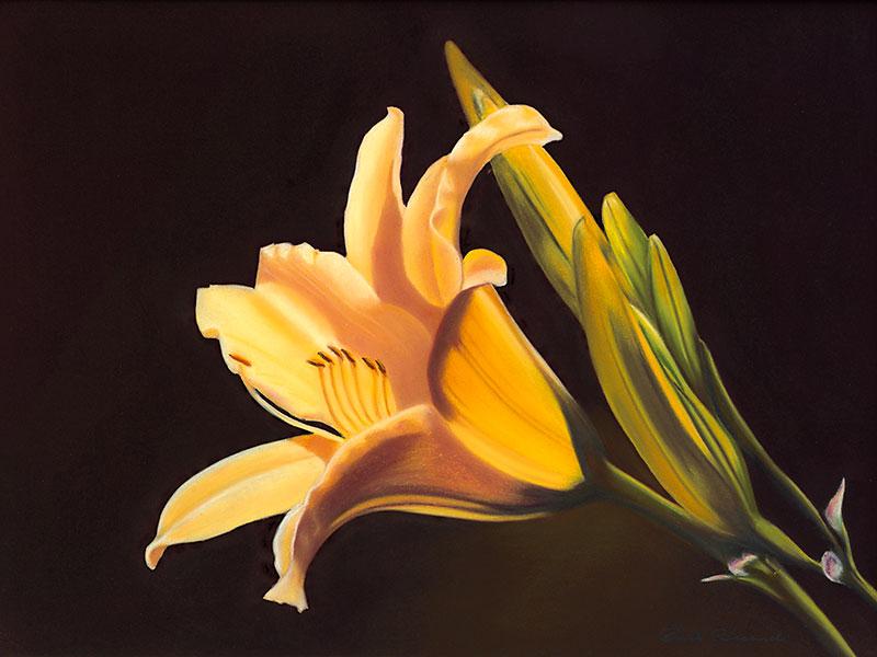 Daylily Pastel Painting