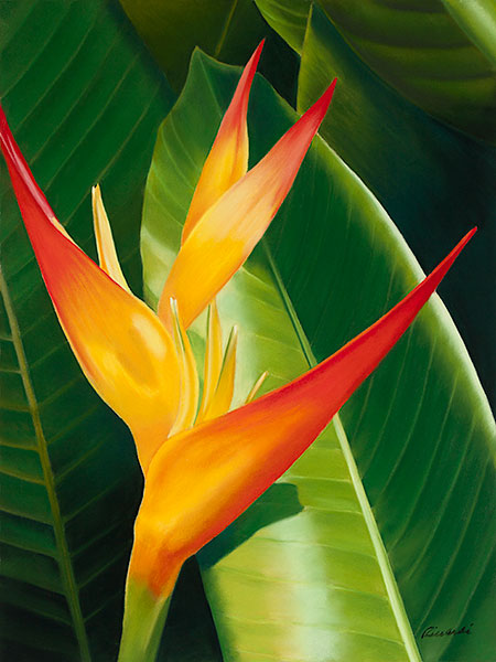 """""""Heliconia"""", Pastel Painting"""